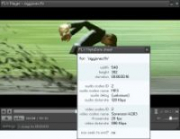 Freeware FLV-Player